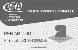carte artisan pen ar dog
