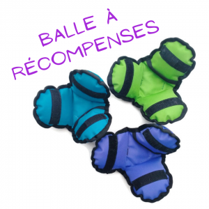balle à récompenses pen ar dog