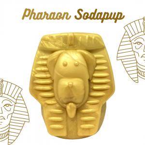 pharaon sodapup pen ar dog