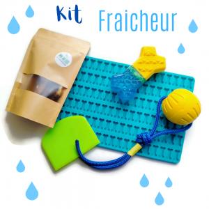 kit fraicheur pour chien by pen ar dog